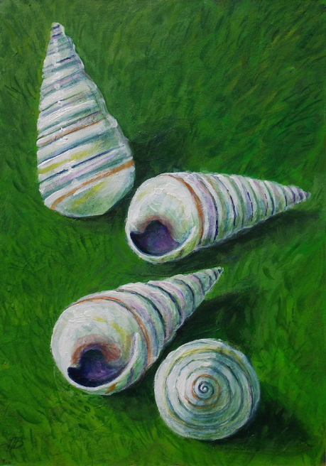 Offerings: Haitian Tree Snail Shells